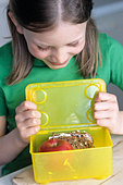 Girl packing up a packed lunch - Stock Image - AF8YBG