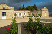 chateau trottevieille saint emilion bordeaux france - Stock Image - BEAW22