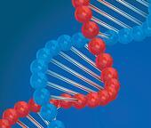 Dna 3d vector illustration on blue background - Stock Image - DNNM4C