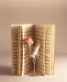 Open musical score and a rose and harmonica in a glass - Stock Image - BGH0G2
