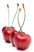 Cherries lined up - Stock Image - AP4F8M