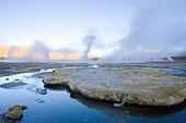 Fumaroles at El Tatio, Antofagasta Region, Chile - Stock Image - BFT72T