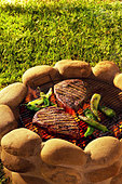 Two beef steaks on a barbecue in open air - Stock Image - AF6TCH