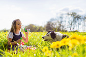 Girl blowing bubbles with dog in field - Stock Image - CT0YXG