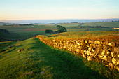England, Northumbria, Hadrian's Wall, Views near Housesteads Roman Fort - Stock Image - CP5P86