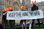 """Westminster, London, July 14th 2015. Hundreds of animal rights activists and members of hunt saboteur groups gather outside Parliament to """"Fight For THe Fox"""" as Paliament discusses an amendment to the bill outlawing fox hunting that could see the sport return to the British countryside. © Paul Davey/Alamy Live News - Stock Image - EXGRPT"""
