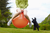 Woman on bouncy ball playing with dog - Stock Image - CR21BF