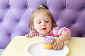 Cupcakes - Stock Image - DC9EJF