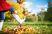 Cropped shot of mature woman kicking autumn leaves in park - Stock Image - DWCBRP