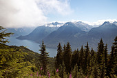 Views of the Jervis Inlet on a summer day. - Stock Image - CFFJ1T