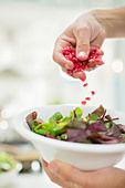 Woman making salad in kitchen - Stock Image - D5WPC2