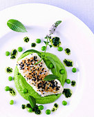 Fish fillet with sesame on pea puree and lime vinaigrette - Stock Image - B471EX