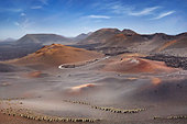 Timanfaya National Park, Lanzarote, Canary Islands, Spain - Stock Image - CRA8J2
