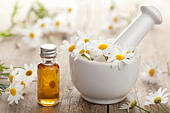 essential oil and camomile flowers in mortar - Stock Image - D3PG86