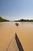 Black Volta river Ghana Men paddling canoe upstream black Voltriver Ghana - Stock Image - DT1CDK