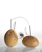 Potato clock - Stock Image - CNGJX5