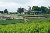 chateau ausone saint emilion bordeaux france - Stock Image - BEATYP