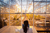 Indian scientist working in greenhouse laboratory - Stock Image - BK0MXA