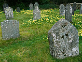 Quaker graveyard saved and restored by Tom Pierce famous through the song Widdecombe Fair Sticklepath Devon - Stock Image - AT3274