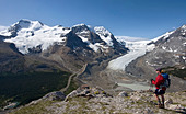 Hiker taking in the views of the Columbia Icefield from Wilcox Pass, Jasper National Park, Canadian Rockies, Alberta, Canada - Stock Image - CFD4XC