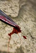 Bloody knife - Stock Image - B0NN06