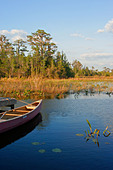 Canoe at camping dock in Okefenokee National Wildlife Refuge swamp - Stock Image - B0C4W9