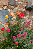 Flowers outside village house in Fikardou, Troodos, Cyprus. - Stock Image - E1JFXP