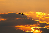 ASK13 Glider launching at sunset, Crusaders Gliding Club,  Kingsfield Airstrip, Dhekelia, Cyprus. - Stock Image - CBTJ9X