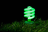 Close up of green fluorescent bulb - Stock Image - BD0N6N