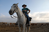 An Israeli cattle herder mounted on a horse in the Golan heights northern Israel - Stock Image - AN7MPP