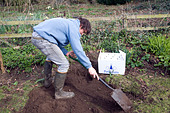Model released teenage boy digging hole in garden to bury pet cat - Stock Image - BK7GW1