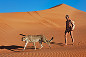 San hunter armed with traditional bow and arrow with cheetah - Stock Image - BNPC92