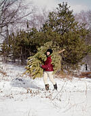 1960s BOY CARRYING CHRISTMAS EVERGREEN TREE THROUGH SNOW - Stock Image - E8T4N3