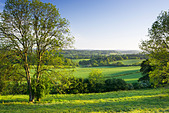 View south from North Downs at Newlands Corner, Surrey, UK - Stock Image - BC210G
