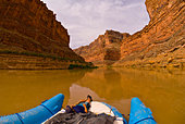 Cove Canyon, Colorado River, Glen Canyon National Recreation Area, Utah USA - Stock Image - D726F8