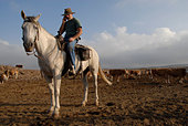 An Israeli cattle herder mounted on a horse in the Golan heights northern Israel - Stock Image - AN7MRP