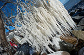 Sassnitz, Germany. 06th Jan, 2017. Impressive icicles hang from the branch of a tree after storm tides in the Baltic resort town of Sassnitz, Germany, 06 January 2017. The aftermath of the storm has drawn droves of visitors curuous to inspect the damage to the area. The head of the local district authority Drescher (CDU) warned visitors and locals not to walk too close to the edges of cliffs. Photo: Stefan Sauer/dpa-Zentralbild/dpa/Alamy Live News - Stock Image - HGAEEN