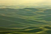 High angle view of a farm, Steptoe Butte, Palouse, Washington State, USA - Stock Image - C55W35