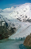 USA Alaska Glacier Bay. Photo by Willy Matheisl - Stock Image - AHJ70C