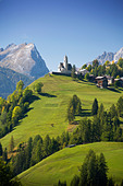 Italy Alps Veneto Dolomites Cadore hill wood forest meadows holidays travel, - Stock Image - BNM907
