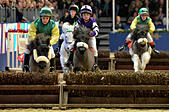 London, UK. 15th Dec, 2016. Olympia The London International Horse Show at Grand Hall Olympia London, UK. 15th Dec, 2016. The Shetland Pony Grand National © Leo Mason sports photos/Alamy Live News - Stock Image - HE025F