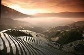 Longsheng terraced ricefields, Guangxi Province, China, Asia - Stock Image - ARMHPT