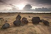 Volcanic boulders in Sarigua national park, Herrera province, Republic of Panama. - Stock Image - CB57N2