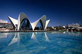 The Oceanographic at the City of Arts and Sciences, Valencia, Spain - Stock Image - AK1M9T