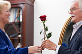 An old man gives a rose to an old lady, Zurich, Switzerland - Stock Image - C90NFF