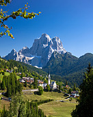 Italy Alps Veneto Dolomites Cadore hill wood forest meadows Pelmo holidays travel, - Stock Image - BNM90K