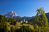 Italy Alps Veneto Dolomites Cadore hill wood forest meadows Pelmo holidays travel, - Stock Image - BNM910