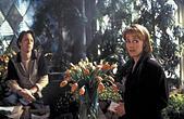 BRIAN TARANTINA & MARY STUART MASTERSON BED OF ROSES (1996) - Stock Image - EFA0TX