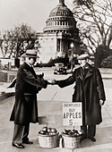 The Great Depression. Unemployed man sells apples near the Capitol in Washington D.C.  As the Great Depression deepened in - Stock Image - CWARPX