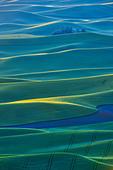 High angle view of green fields, Steptoe Butte, Palouse, Washington State, USA - Stock Image - C55TYD